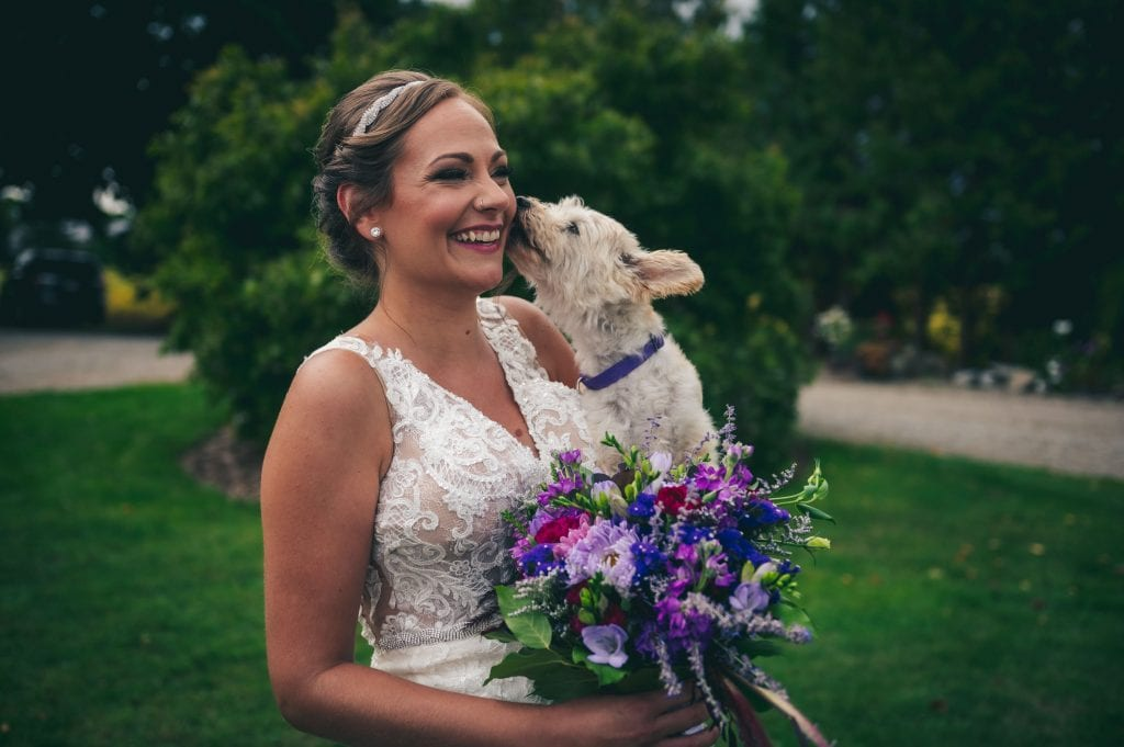 Raining Cats & Dogs: A Look at 8 Furry Friends Who made Celebrations Extra Special 5